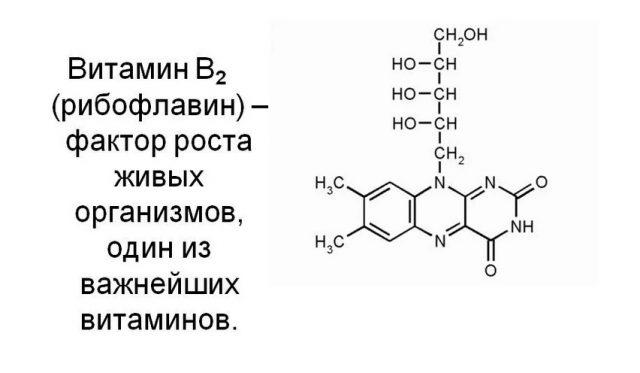 Рибофлавин (В2)