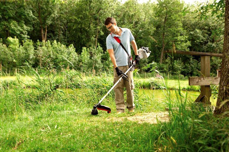 Триммер — хороший помощник для садовода