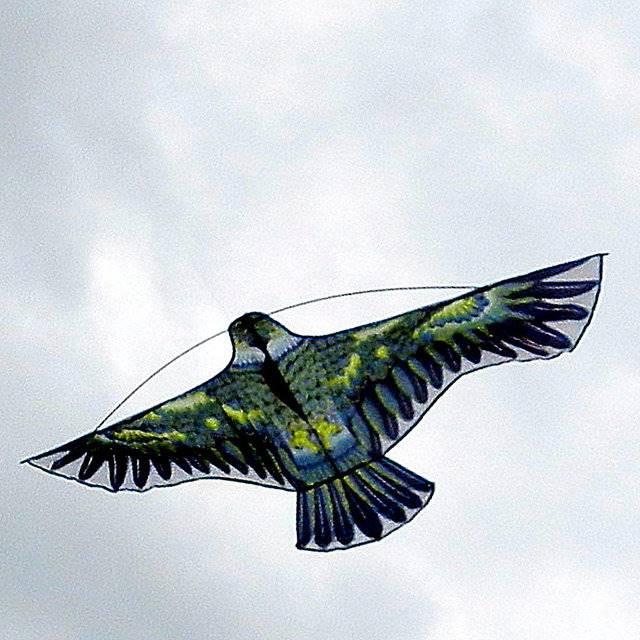 Отпугиватели птиц для элеваторов устройство грейдер элеваторов