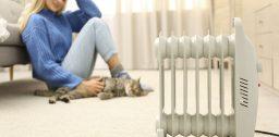 Рейтинг масляных обогревателей - создаём в доме тепло и уют